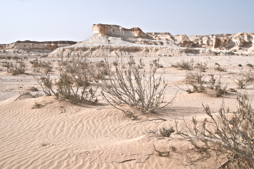 A sandy landscape in the Badia region of the Eastern Desert of Jordan