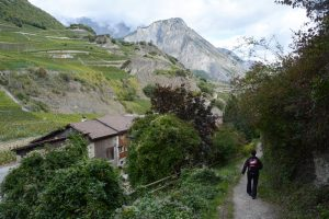 The Valais Swiss Wine Trail, on the edge of the southern Alps in Switzerland