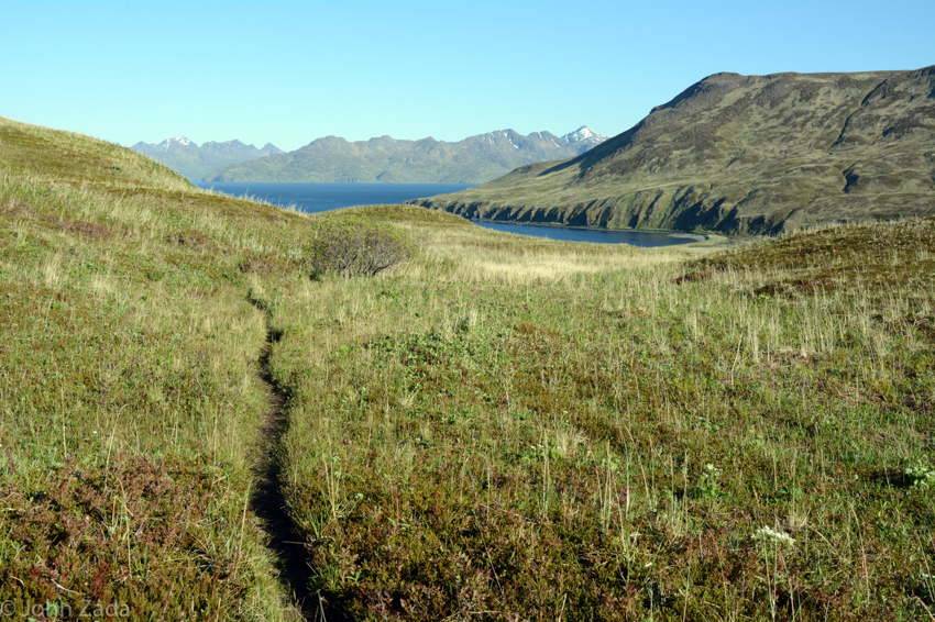 Hiking trail, Dutch Harbor, Unalaska Island, Aleutian Islands, Alaska