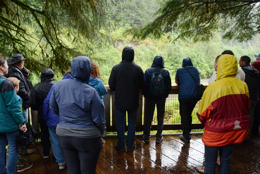 Tourists at Fish Creek Wildlife Observation Site in Hyder Alaska, USA.