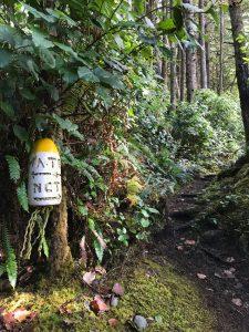 The North Coast Trail at Nissen Bight