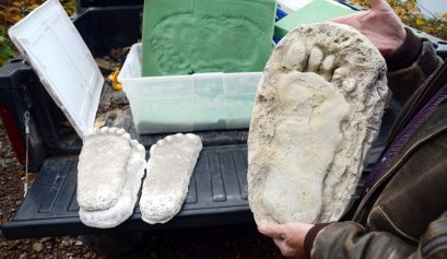 plaster casts of sasquatch footprints